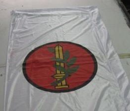 דגלים סינים סטנדרטים