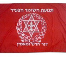 דגלים בהדפסת שטח
