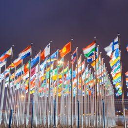 דגלים בהדפסה אישית
